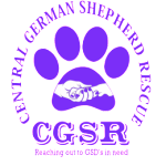 central-german-shepherd-rescue-cgsr